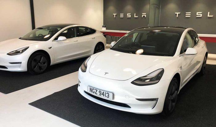Model 3 Twins